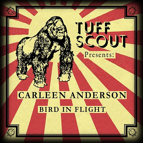 Bird In Flight by Carleen Anderson