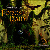 Forest Rain by Dean Evenson
