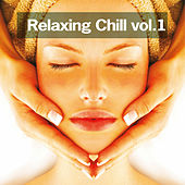 Relaxing Chill, vol. 1 by Various Artists