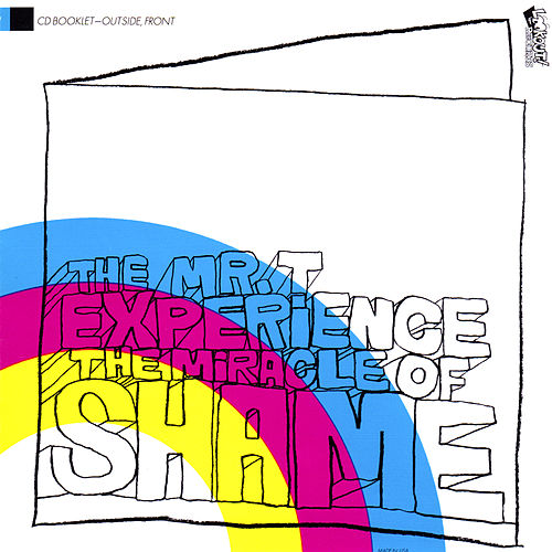 The Miracle of Shame by Mr. T Experience