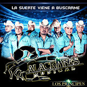 La Suerte Viene a Buscarme by Alacranes Musical
