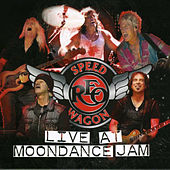Live at Moondance Jam by REO Speedwagon