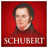Schubert (Red Classics) by Various Artists