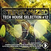 Stereonized - Tech House Selection, Vol. 12 by Various Artists