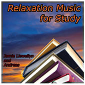 Relaxation Music for Study by Various Artists