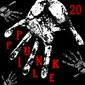 Punk Pile 20 by Various Artists