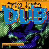Trip into Dub - Ambient Rituals. Exercise Two. Music for Creation by Various Artists