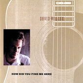 How Did You Find Me Here by David Wilcox