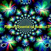 Planeta DJ Essential: Top Dance, Vol. 5 (Ibiza Dance Sound) von Various Artists