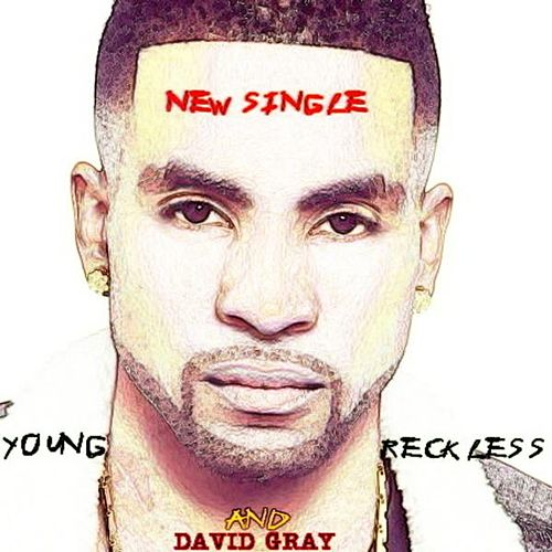 Young & Reckless by David Gray