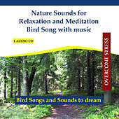Nature Sounds for Relaxation and Meditation Bird Song with music - In the forest by Rettenmaier