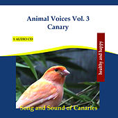 Animal Voices Vol. 3 Canary - Song and Sound of Canaries by Rettenmaier