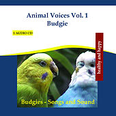 Animal Voices Vol. 1 Budgie - Budgies Songs and Sound by Rettenmaier
