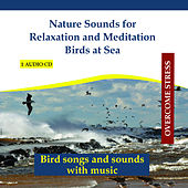Nature Sounds for Relaxation and Meditation - Birds at Sea by Rettenmaier