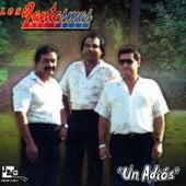 Un Adios by Los Fantasmas Del Valle
