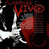Flamenco Vivo by Various Artists