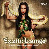 Exotic Lounge (From Buddha Oriental India Chillout to Cafe Balearic Ibiza Collection) by Various Artists