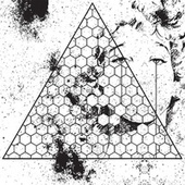 Betrayed In The Octagon by Oneohtrix Point Never