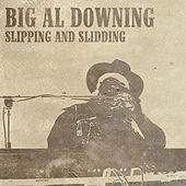 Slipping And Sliding by Big Al Downing