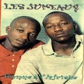 Hymne d'Afrique by Les Jumeaux