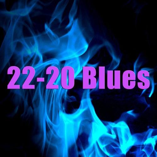 22-20 Blues by Skip James