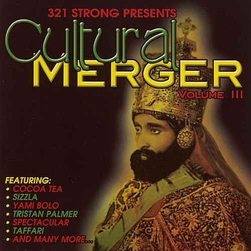 Cultural Merger Vol. 3 by Various Artists
