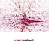 Principles of Deep House 6.0 by Various Artists