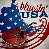 Bluesin' USA by Various Artists