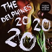 20 20 20 by Delphines