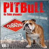 Pitbull de Cuba Presents Cubaton, Vol. 1 (Reggaeton de Cuba, Cuban Reggaeton, Dembow, Mambo) by Various Artists