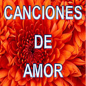Canciones de Amor by Various Artists