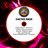 Cactus Maze by Various Artists