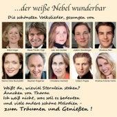 Brahms, Beethoven, Mahler, Weber, Reichardt, Fried, Silcher, Meyer-Helmund, Anonym (Folk Poetry): Volkslieder (Folksongs) . . . Der Weiße Nebel Wunderbar by Various Artists