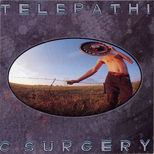 Telepathic Surgery by The Flaming Lips