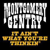 It Ain't What You're Thinkin' by Montgomery Gentry