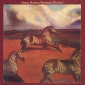 Sterengeti Minstrel by Sonny Fortune