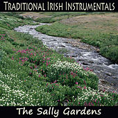 Traditional Irish Instrumentals: The Sally Gardens by The O'Neill Brothers Group