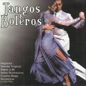 Tangos e Boleros by Various Artists