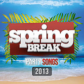 Spring Break Party Songs 2013 by Various Artists