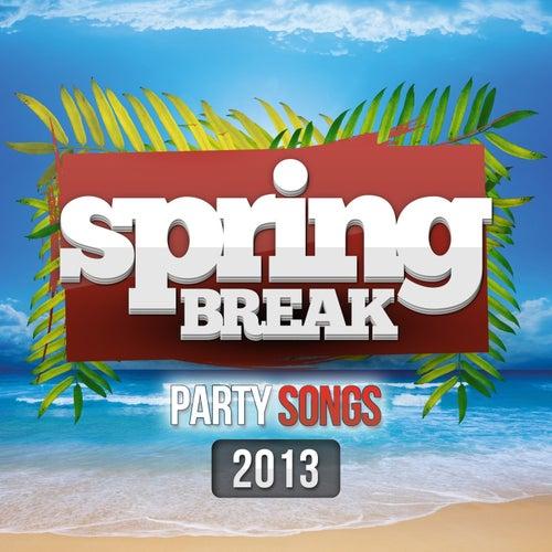 Spring Break Party Songs 2013 by Various Artists