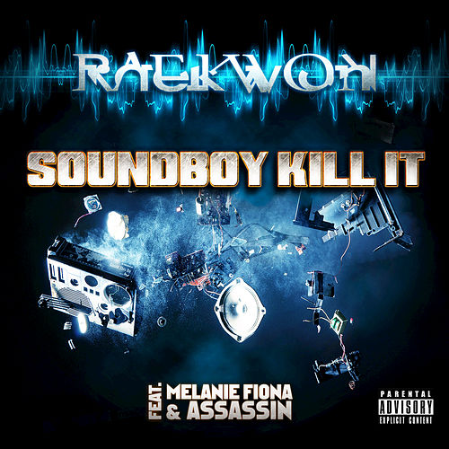 Soundboy Kill It by Raekwon