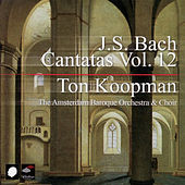 J.S. Bach: Cantatas Vol. 12 by Amsterdam Baroque Orchestra
