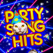 Party Songs Hits by Various Artists
