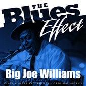 The Blues Effect - Big Joe Williams by Big Joe Williams