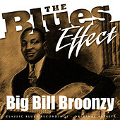 The Blues Effect - Big Bill Broonzy by Big Bill Broonzy