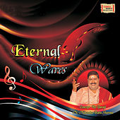 Eternal Waves by Various Artists