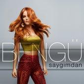 Saygımdan by Bengü
