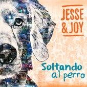 Soltando al Perro by Jesse & Joy