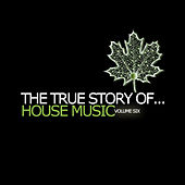 The True Story of...House Music, Vol. 6 by Various Artists