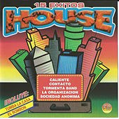 15 Exitos House by Various Artists